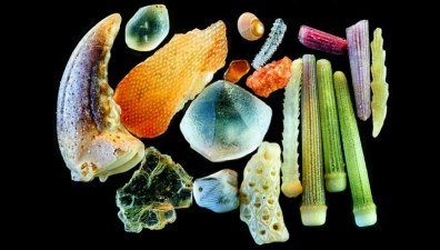 This Is How Sand Looks Magnified Up To 300 Times