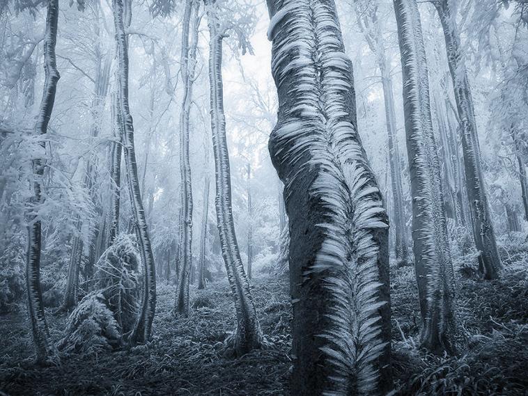 frozen-ice-art-28-arttextum-replicacion