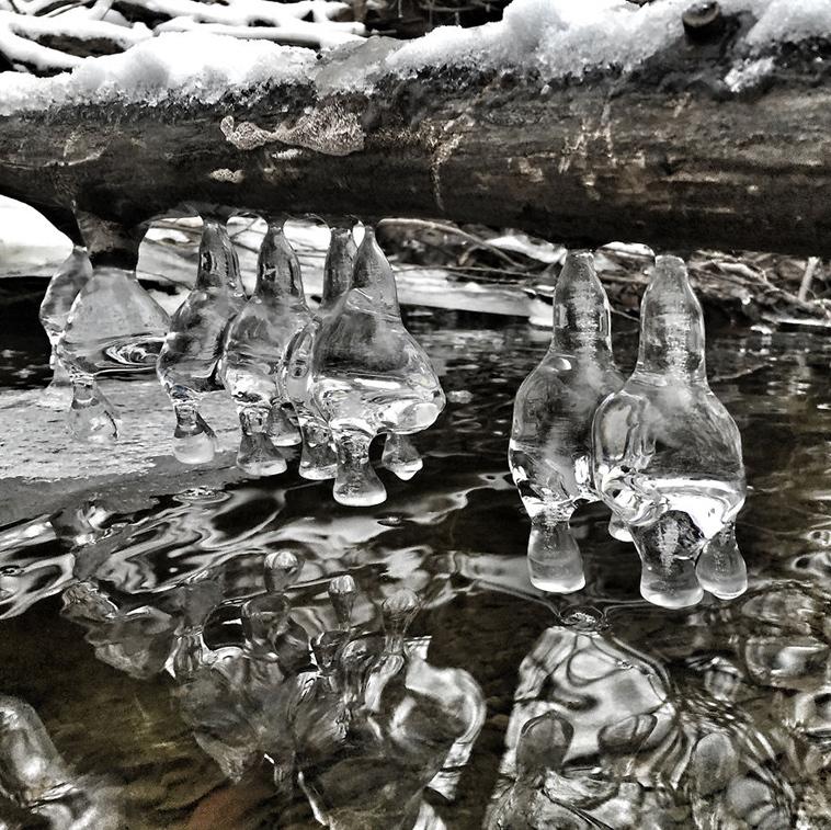 frozen-ice-art-30-arttextum-replicacion.jpg