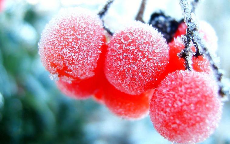 frozen-ice-art-33-arttextum-replicacion.jpg